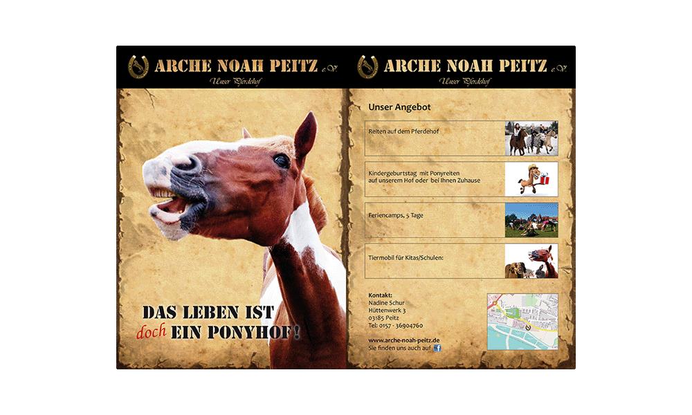 Arche Noah Peitz - Flyer